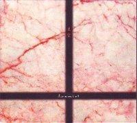 玉置浩二* - ワインレッドの心 (1999, CD) | Discogs